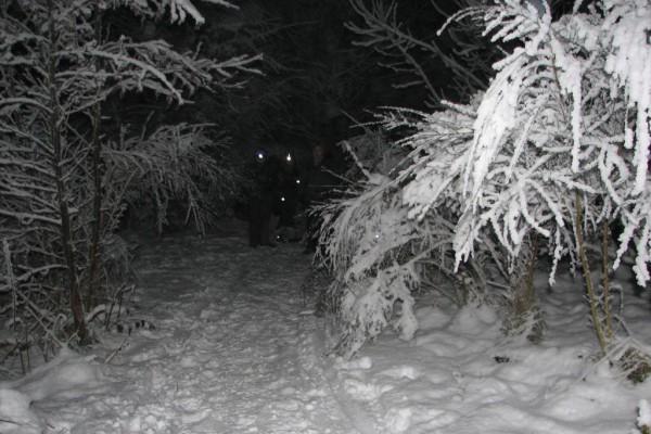weihnachtsfeier-1105129C48-884B-CF74-9FB8-4B4E88A53253.jpg